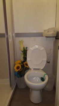קרון נייד של מקחת ושירותים